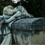 La muerte y el dolor del mundo