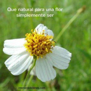 la flor naturalmente es lo que es