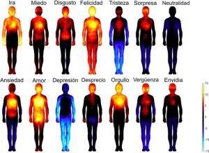 Mapa de las emociones en el cuerpo - español