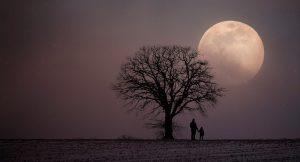 Árbol, luna, padre, hijo y desarrollo del potencial humano