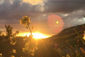 El sol muere tras las colinas de la vida