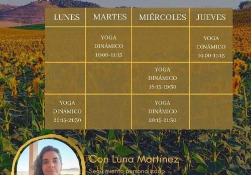 Clases de la escuela virtual de Yoga